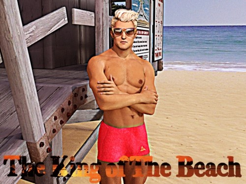 The King of the Beach [Version 0.5 Fixed Final] (Honeygames) 2017
