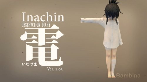 Inachin - Observation Diary